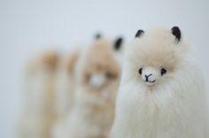 White, handmade, fluffy alpaca toy. Can you resist cuddling with it? Order via: www.alpacadoro.com