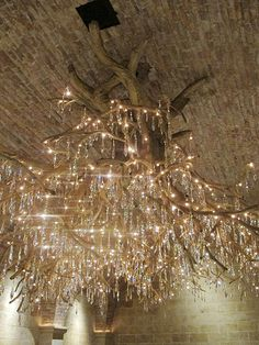 Hall Winery, Napa…tree trunk chandelier w/ Swarovski Crystals dangling from its roots.