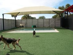 EasyTurf installation done at a pet care facility. The dogs just loved rolling around on it. www.easyturf.com artificial grass l outdoor living l backyard design l curb appeal l fake grass l pet grass