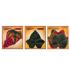 Wine and Cheese Party Set of 3 Cheese Leaves - on #SALE at $27.95  Food safe parchment #decoleaves are awesome table decorations!  http://www.pacificmerchants.com/wine-and-cheese-party-set-of-3-cheese-leaves.html #cheeseleaves #pacificmerchants #tabledecoration #foodpresentation