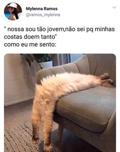 The post appeared first on Memes BRasileiros.