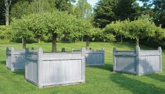 Apple topiary trees- THIS IS ONE OF MY OUTDOOR FAVORITES! What do you think of these boxes?