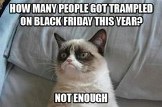 Warped sense of humour but it makes me laugh  particularly with grumpy cat LOL