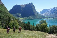 Sommerturnéen på tur til Segestad fjellgård i Stryn Mountains, Nature, Travel, Naturaleza, Viajes, Destinations, Traveling, Trips, Nature Illustration