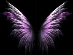 Help give wings to Cure Cystic Fibrosis, support CF research.