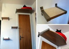 Cat ladder and above-door perch. Looks like IKEA shelf brackets. But my cats would use it for ambush, not naps.
