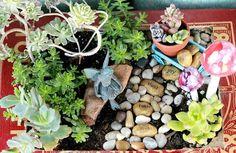 fairy garden, gardening, AugustGarden