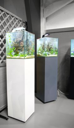 1000 ideas about aquarium design on pinterest aquarium aquascaping and fish tanks. Black Bedroom Furniture Sets. Home Design Ideas