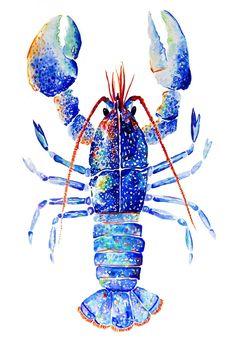 Lobster Pillow, Pillow 18 x Throw Pillow, Lobster Pillow, Handmade Decorative Pillow, Unique Thr Crab Art, Fish Art, Watercolor Fish, Watercolor Paintings, Watercolor Paper, Lobster Art, Lobster Drawing, Aquarell Tattoos, Coastal Art