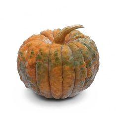 Pumpkin Farm, Black, Food, Black People, Essen, Meals, Yemek, Eten