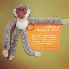 Committed monkey! #oxbridgeacademy #oxbridgeacademysa #obi #distancelearning #collegemascot #mascot #studybuddy #support