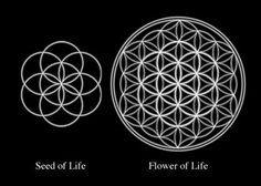 61 Trendy tattoo mandala geometric symbols flower of life Flower Of Life Tattoo, Flower Of Life Symbol, Flower Tattoos, Life Flower, Geometric Symbols, Geometric Mandala, Geometric Patterns, Mandala Symbols, Geometric Flower