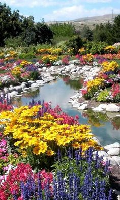 122 pictures for garden design - stylish garden ideas for you - gardening pictures design ideas stones pond plants - Beautiful Landscapes, Beautiful Gardens, Pretty Flowers, Wild Flowers, Spring Flowers, Water Flowers, Flowers Nature, Colorful Flowers, Colorful Garden