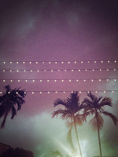 night partys under the lights and palm trees <3