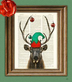 mi mascota, Rudolph
