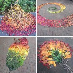 Japanese People Use Fallen Leaves To Create Colorful Pieces Of Art