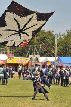 Hamamatsu Matsuri – Kite Festival