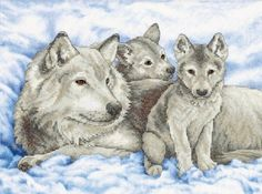 Stamped Cross Stitch, Mother Wolf And Pups