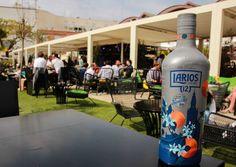 Larios 12 se prepara para la Feria de Abril https://www.vinetur.com/posts/2179-larios-12-se-prepara-para-la-feria-de-abril.html