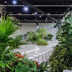 Lacoste's jungle @ Spring Studios, New York Havana Theme Party, Bureau Betak, Lacoste, Catwalk Design, Spring Studios, Bar Art, Stage Lighting, Plant Design, Retail Design