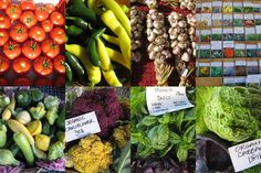 Methow Valley Farmers Market in Twisp, Saturdays 9am - noon.