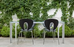 STUA's Globus chair around a Deneb table, both for indoor and outdoor. Image in Cosin Studio in Valencia.