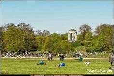 Englischer Garten - München-Spezial #München #Munich #Bayern #Bavaria #Deutschland #Germany #igersgermany #IG_Deutschland #biancabuergerphotography #shootcamp #pickmotion #EnglischerGartenMünchen #EnglishGardenMunich #sightseeing #Park #bluesky #blauerhimmel