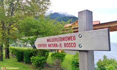 Alta Val Pusteria - Il Sentiero Natura nei pressi di Dobbiaco