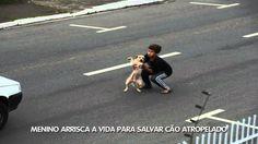 Vídeo Notícias: Menino arrisca a vida para salvar cão atropelado - TV ABCD
