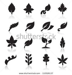 Leaf icons/shapes