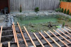 Instead of a swimming pool, this awesome family built a swimming pond in their backyard. And a swimming pond is exactly what it sounds like. Natural Swimming Ponds, Diy Swimming Pool, Building A Swimming Pool, Natural Pond, Piscina Diy, Ideas De Piscina, Ponds Backyard, Backyard Landscaping, Water Features