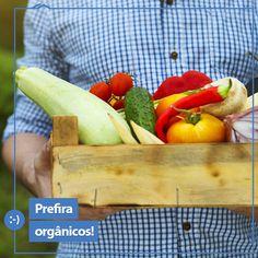 Livre de pesticidas ou metais pesados, o consumo de alimentos orgânicos é benéfico à saúde e além disso, ajuda a promover a agricultura familiar! É um ótimo hábito para se adotar, não é mesmo?