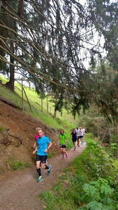 Corsa della settimana - Laufwoche