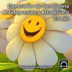 Generador de Serotonina
