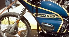 Pangea Speed Turbo Harley ~ Return of the Cafe Racers