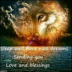 Good Night Greetings, Good Night Wishes, Good Night Sweet Dreams, Good Night Quotes, Morning Quotes, Wolf Images, Wolf Photos, Wolf Pictures, Good Morning Wednesday