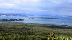 View from the top of Rangitoto