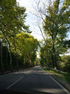 Estrada de Sintra
