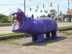 Purple Hippo in Muncie, Indiana