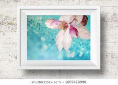 Anna Misslinger: портфолио стоковых фотографий и изображений | Shutterstock White Photo Frames, Magnolia, Anna, Photography, Image, Design, Home Decor, Photograph, Decoration Home