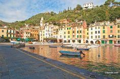 Lo Stella, Portofino. #restaurant #portofino #riviera #mediterranean #food #foodie