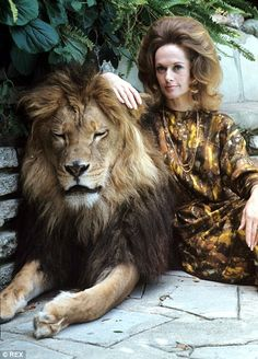 Catnap: Neil dozes while star of The Birds Tippi Hedren poses with huge animal