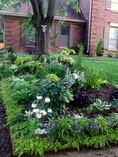 Shade Garden Design Ideas shade garden plan Shade Garden Designs