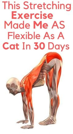 Health and fitness, can't adhere to fixed workout, which in time takes a negative turn. So, do you want of that health fitness inspiration? Then check this important pin number 6787397230 today. Fitness Workouts, Fitness Diet, Yoga Fitness, At Home Workouts, Health Fitness, Yoga Workouts, Fitness Games, Fitness Quotes, Fitness Style