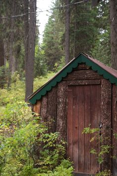 Shack in the woods. | prolabdigital.com