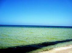 Si lo que quieres es relajarte y disfrutar de la #playa este #verano, en Yucatán tenemos muchísimas opciones, una de ellas es la tranquila playa de San Crisanto. #Beach #Relax #Vacations #VivaLoChic