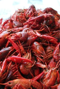 """Crawfish, also need small red potatoes and corn that is cooked in the crab & seafood seasoning. Oh, my cher what a party. """"Laissez Les Bon Temps Roulez"""""""