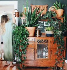 """The 6 Best Houseplants to Grow (+ 5 Challenging Ones) - The 6 Best Houseplants to Grow (+ 5 Challenging Ones) There are a lot of articles floating around in the Internet that have titles like """"Hard To Kill Houseplants"""" or """"low maintenance houseplan… Indoor Garden, Indoor Plants, Home And Garden, House Plants Decor, Plant Decor, Diy Bedroom Decor, Diy Home Decor, Decoration Plante, Stylish Home Decor"""