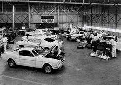 1965 Mustang GT At Shelby Assembly factory 8 x 10 Photograph Mustang Fastback, 1965 Mustang, Mustang Cars, Ford Mustangs, Ford Shelby, Ford Gt, Shelby Mustang, Shelby Gt500, Jaguar
