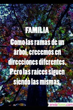 Mi familia es lo principal para mí. Nuestro amor es incondicional. Somos uno. Mi prosperidad es la prosperidad de todos ellos. Mi felicidad es la felicidad de todos ellos. Somos muchos. Somos una potencia creadora de belleza, armonía y abundancia.